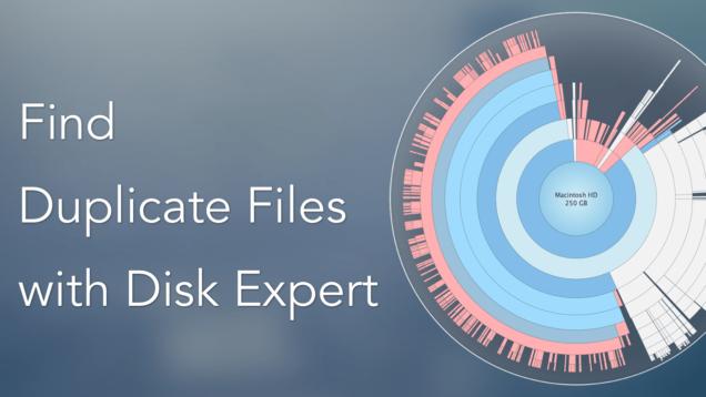 disk expert - duplicates