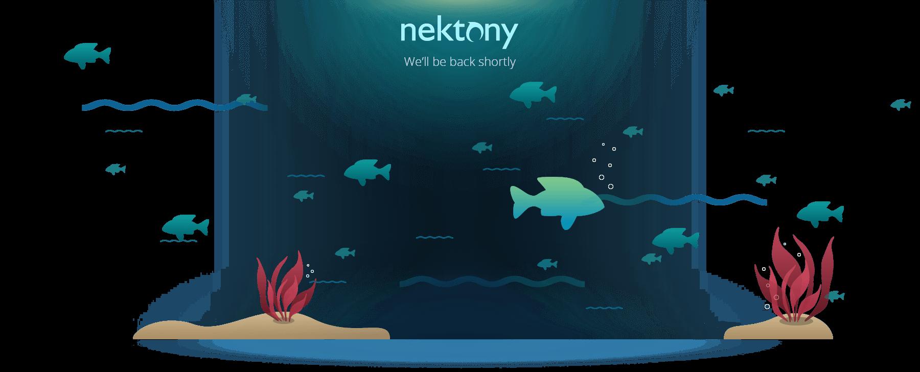 maintenance-nektony