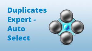Blog-Duplicates-Expert-AutoSelect