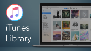 remove files in iTunes library