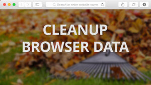 Blog_Cleanup-Browser-Data