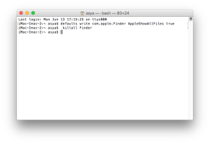 Terminal window with command to show hidden files on Mac