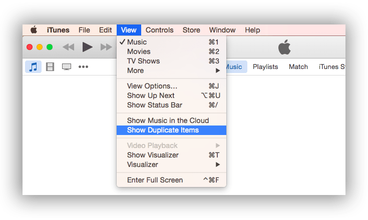 Duplicate Files in iTunes