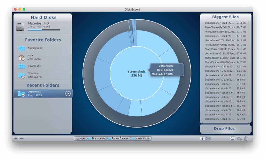 Disk-expert-largest-file