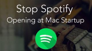spotify on startup