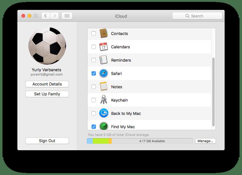 safari browser icon in iCLoud settings