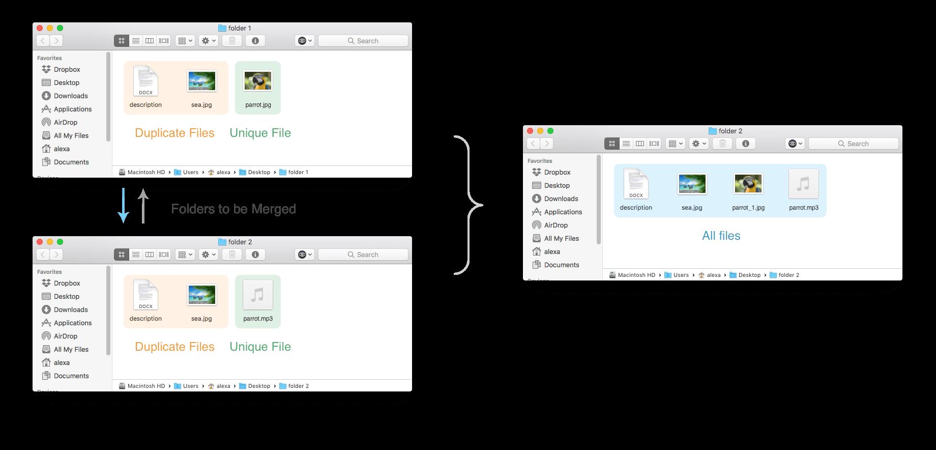 merge similar folders