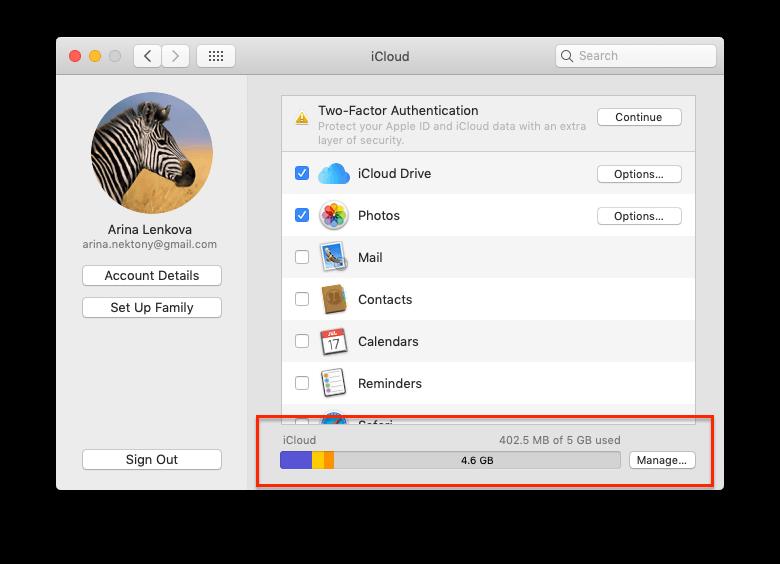 manage icloud storage on Mac