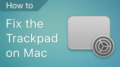 How to fix the trackpad on a MacBook
