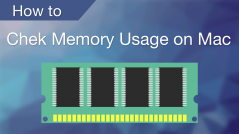 How to check memory on Mac