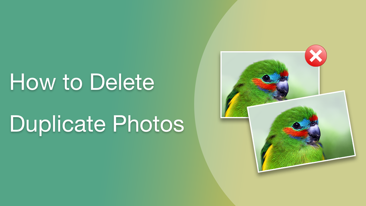 video delete duplicate photos