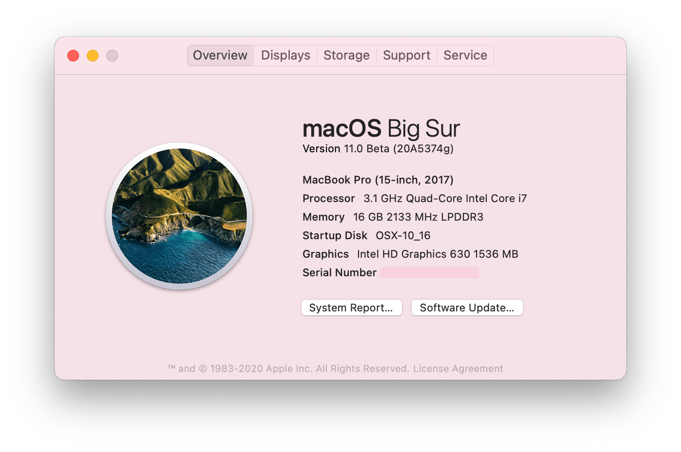 macOS Big Sur - about Mac panel