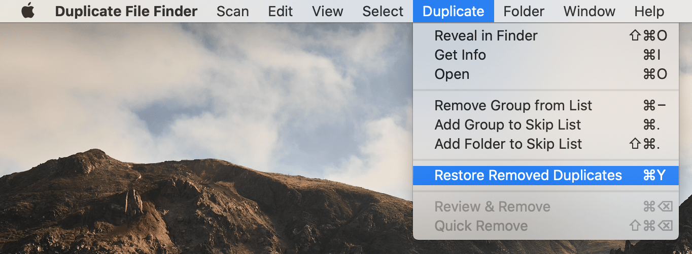 duplicate file finder history