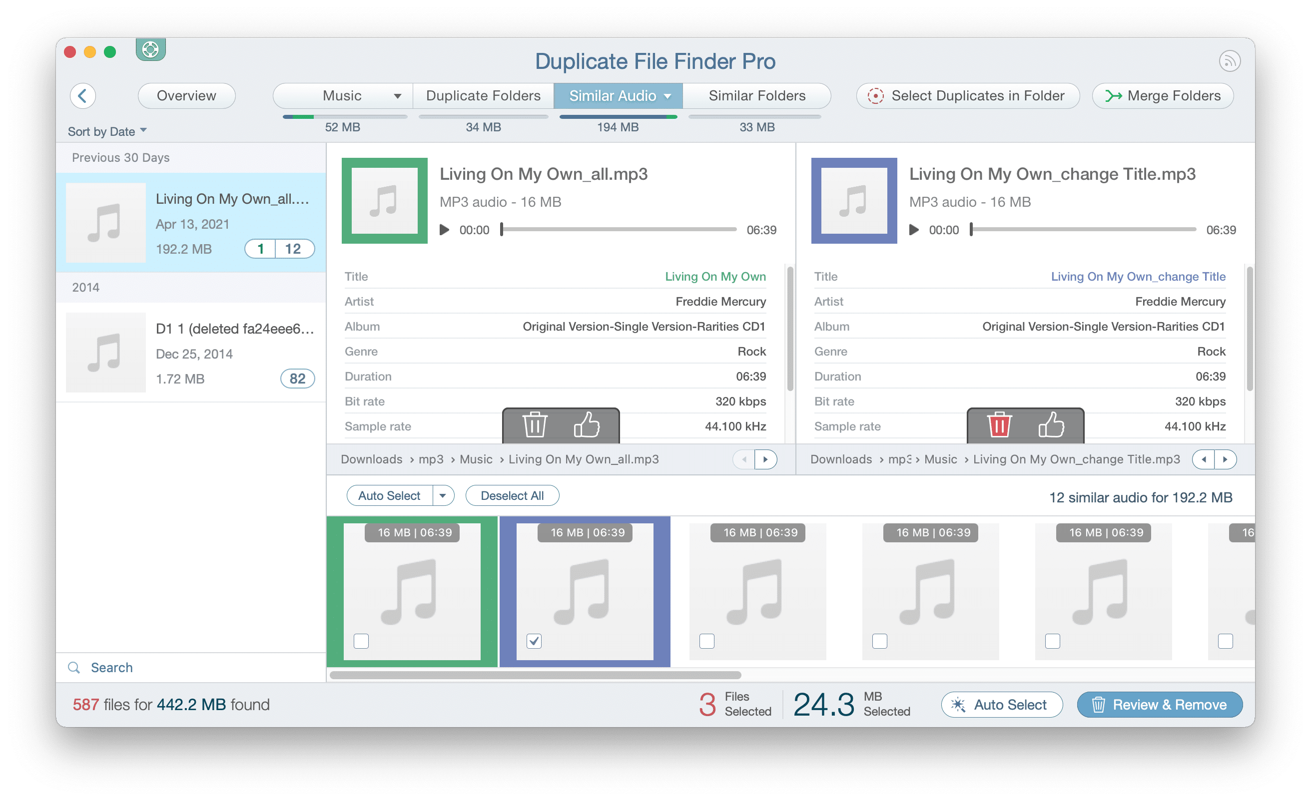 Duplicate File Finder showing the list of similar audio files